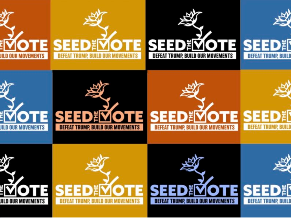 Seed the Vote: Don't Just Vote, Organize!